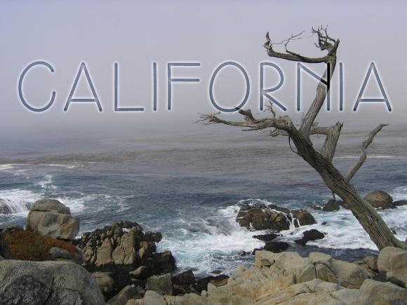 CALIFORNIA PCH
