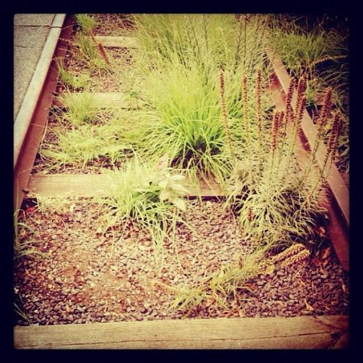 Highline - Instagram
