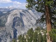 california 055