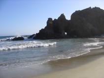 california 261