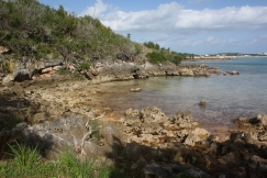 Pretty Cove