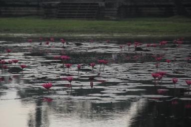 *Angkor-06.08.39