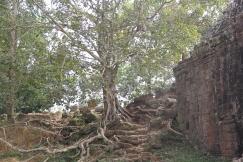 *Angkor-10.07.11