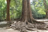 *Angkor-13.54.57