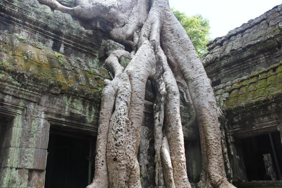 *Angkor-13.58.01