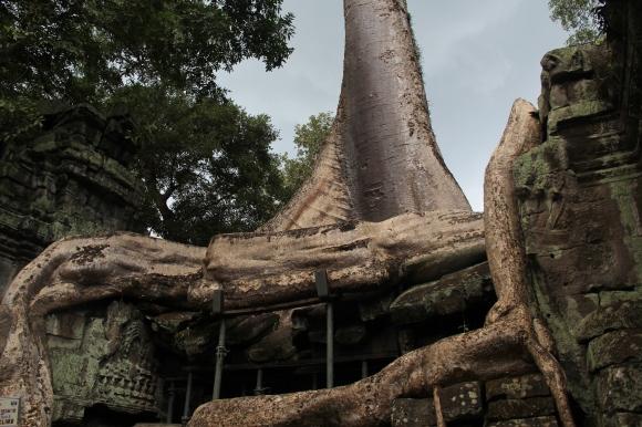 *Angkor-14.09.11