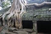 *Angkor-14.35.12
