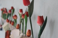 A tulip memorial with hand written notes
